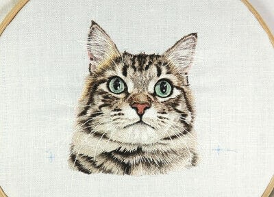 How to make a needlecraft. Tabby Pocket Cat - Step 46