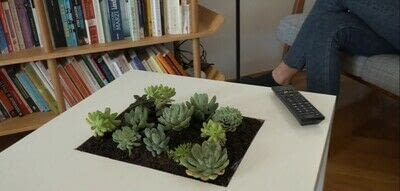 How to make a side table. Diy Succulent Table - Step 6