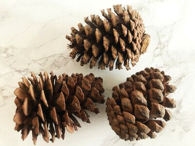 How to make an ornament. Scented Pine Ornaments For A Faux Tree - Step 1