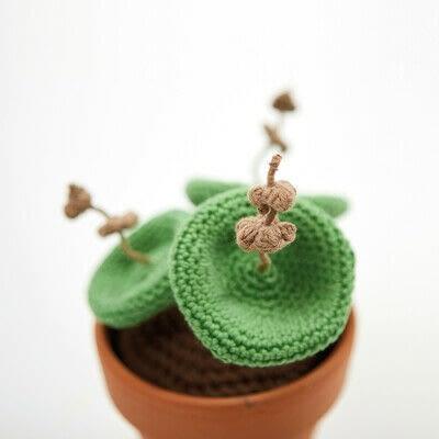 How to make a plant plushie. Crochet Crassula Umbellata Succulent - Step 9