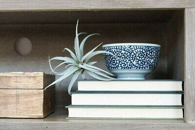 How to make a bookcase / cubby. How To Style Bookshelves - Step 11