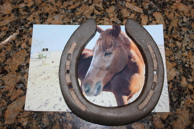 How to make a recycled photo frame. Horse Shoe Photo Frame - Step 2