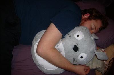 How to make a bear plushie. Totoro Pillow Plushy  - Step 8