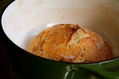 How to bake a cob loaf. Dutch Oven Crusty Bread - Step 3