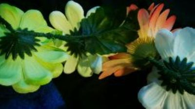 How to make a flower crown. Forever Flower Headband  - Step 3
