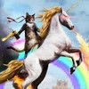 Normal square cat riding a fire breathing unicorn 16414 1280x800